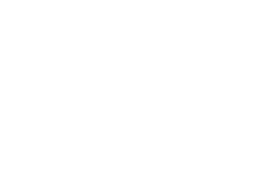 moodle - WU Executive Academy